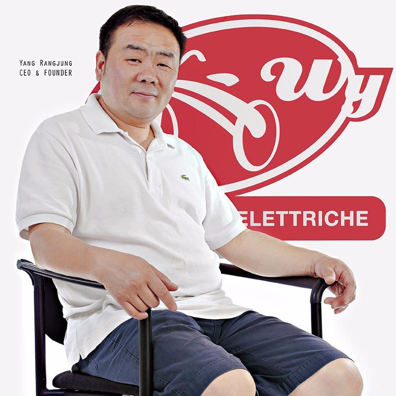 Wy è un produttore bicicletta pedalata assistita